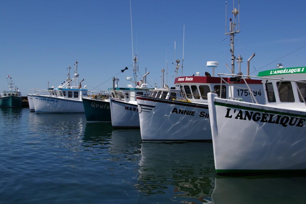 Bateaux aux îles